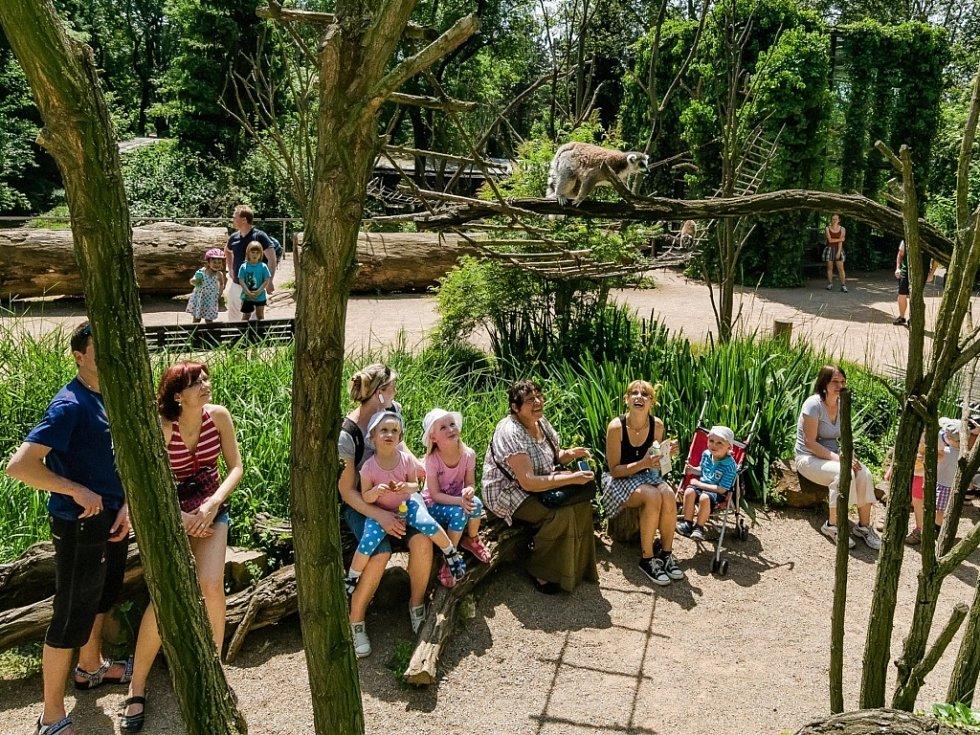 Areál Zoo Praha, který se díky své oblíbenosti dostal na světovou špičku.