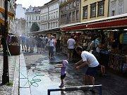 Tropy v Praze.