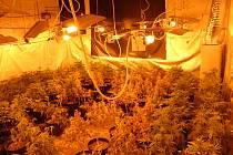 PŘEKVAPENÍ. V nenápadném domku hasiči našli vybavenou pěstírnu se čtyřmi stovkami rostlin konopí.