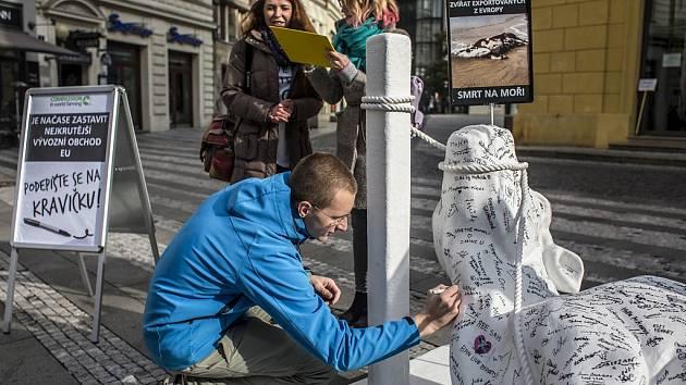 Socha ležící spoutané krávy byla vystavena v pondělí 19. října 2015 na Jungmannově náměstí v Praze v rámci evropského turné Cow on Tour na podporu ukončení vývozu hospodářských zvířat z Evropské unie.