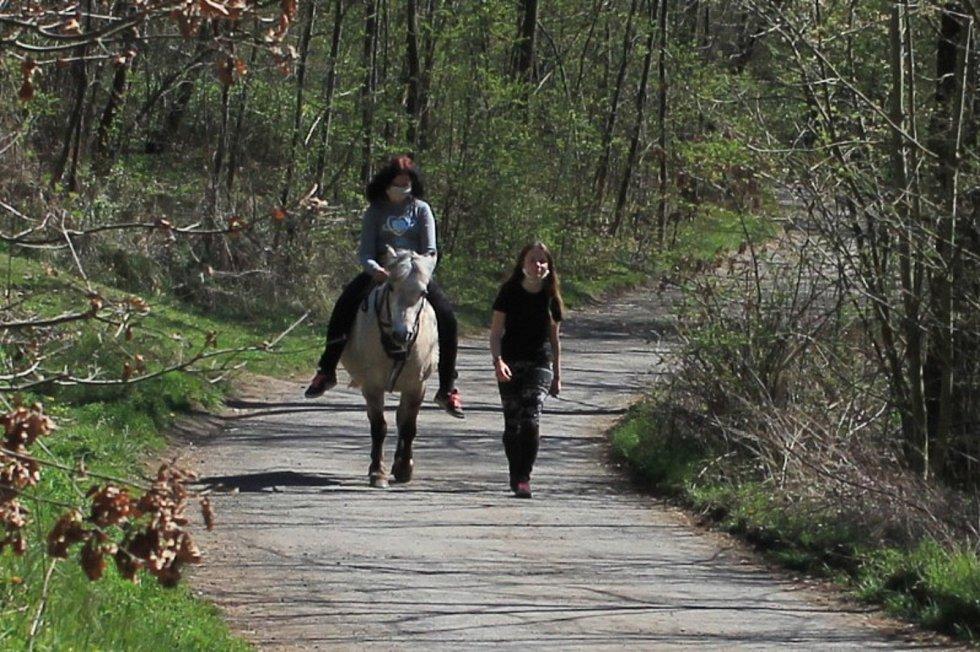 Někdo na kole, někdo pěšky a někdo na koni.