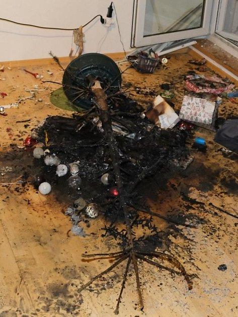 Ohořelý vánoční stromek.