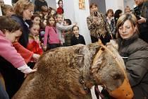 V 1. patře menší budovy základní školy Nedvědovo náměstí v Praze-Podolí bylo 12. února 2009 slavnostně otevřeno rodinné centrum 4 medvědi za účasti dvou živých medvědů Toma a Jerryho.