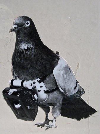 Unikátní patent zroku 1903: miniaturní časovačem spouštěný fotoaparát nesený holubem.