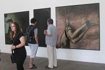 Vernisáž výstavy obrazů Karla Balcara s názvem Untitled a expozice Pracoviště Technokrata Davida Hřivňackého a Davida Helána v prostoru Galerie Orlovna zámecká vodárna.