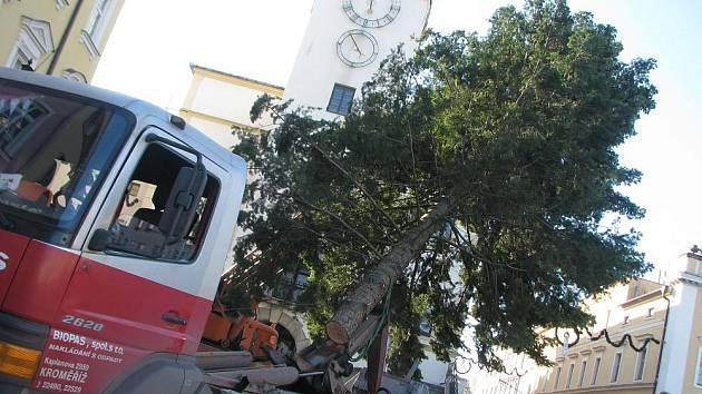 V Kroměříži vztyčili 23. listopadu 2009 vánoční strom.