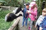 Holešovské SVČ TYMY organizovalo tábor Putování za zvířátky