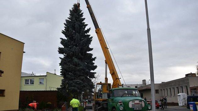 Strom na Velkém náměstí pro Vánoce 2019.