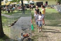 Jubilejní sté výročí od počátku pořádání výstavy zvířat v si připomněli o víkendu v Morkovicích. Jak jinak než výstavou slepic, holubů i kachen.