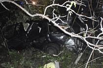 Passat vylétl na Bystřicku ze silnice do lesa: tři zranění