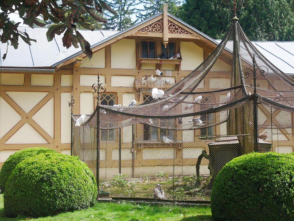 V Podzámecké zahradě v Kroměříži chovají paviány, makaky, daňky, pávy nebo třeba husy, slepice či kachny.