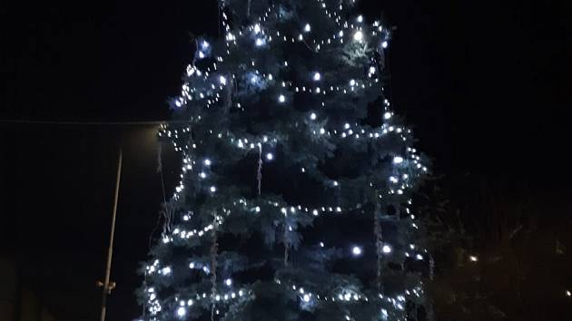 Vánoční strom ve Zdounkách.