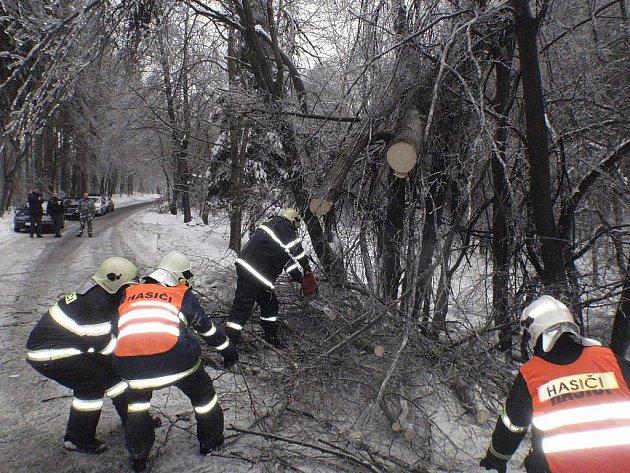 Pomoc hasičů při odstraňování spadlých stromů