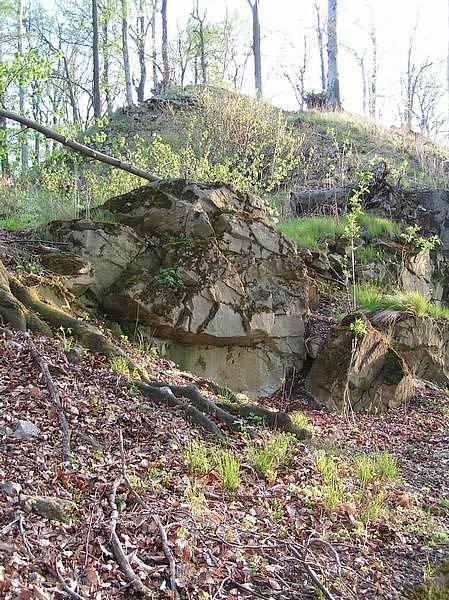 Zřícenina hradu Křídlo.