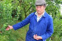 Martin Vrána ze Zborovic vyšlechtil už pět nových odrůd angreštu. Stává se tak v oboru uznávaným.