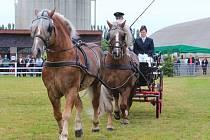 Kroměřížská místní část Kotojedy hostila o druhém červnovém víkendu tradiční zemědělskou výstavu.