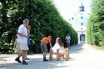 Celoevropská akce Víkend otevřených zahrad nabídla v Květné i Podzámecké zahradě bohatý doprovodný program.