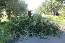 Následky nedělní bouřky provázené silným větrem, která se prohnala Kroměřížskem.