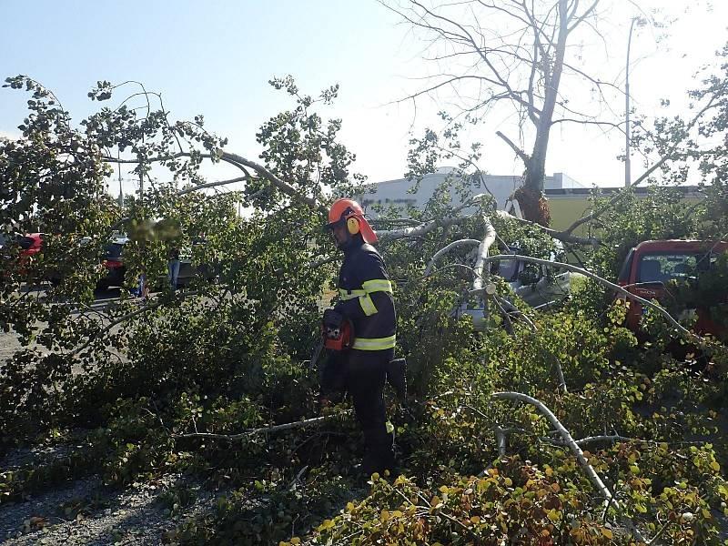 Na parkovišti u ulice Stoličkova v Kroměříži spadla větší větev stromu na dva zaparkované automobily. 5 října 2021