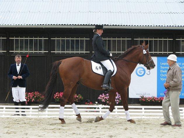 V jezdecké stáji Galatík v Těšánkách se v neděli 14. září konala výstava moravského teplokrevníka. Na programu bylo mimo jiné hodnocení koní nebo i ukázka umění s bičem či lasem.