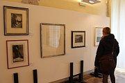 Výstavu 100 let Hollaru, která zahrnuje díla předních českých grafiků, mohou lidé v holešovském zámku navštívit pouze do 1. října.