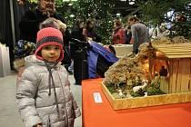 Adventní výstava na Florii v Kroměříži 2019