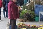 Vstaviště floria hostí Podzimní Floriu: nabízí například mezinárodní výstavu bonsají či suiseki ale i bohatý dobrovodný program. Zahraje třeba Jožka Šmukař ale proběhnou i závody králíků.