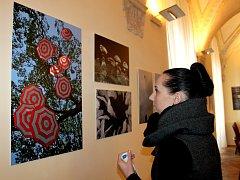 Zimní sezónu na holešovském zámku zpestřují výstavy dvou fotografů