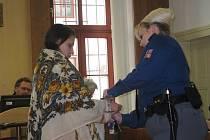 Obviněná Biháriová bude ve vazbě nejméně do února.