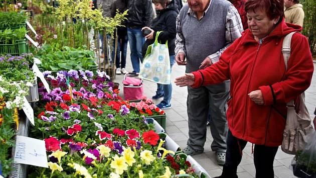 Prodejní výstava Floria Jaro v Kroměříži