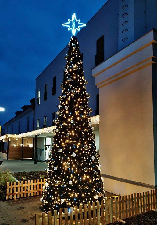 Vánoční strom v Holešově II. - u nové pošty v areálu Panského Pivovaru