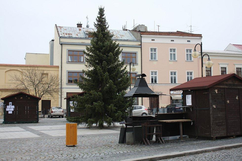 Nový vánoční strom v Holešově.
