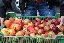 Kroměřížská moštárna na Chropyňské ulici už za letošní sezonu vymoštovala přes osm tisíc litrů jablečné šťávy.