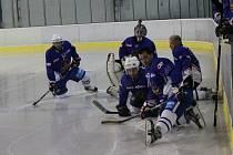 Kroměřížský hokejový klub oslavil o víkendu sté výročí založení. V sobotu se představili v přátelském utkání mládež i muži. Neděle patřila exhibici veteránů a hvězd.
