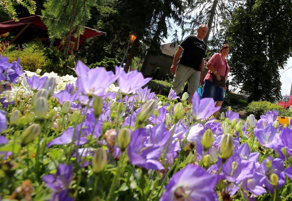 Zahradnická výstava ZAHRADA VĚŽKY. LÉTO 2019 - 1. - 4. 8. 2019