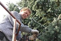 Vánoční strom v centru Holešova už stojí. Rozzáří se první adventní neděli.