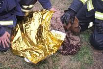 Topící se fence v Chropyni pomohli hasiči