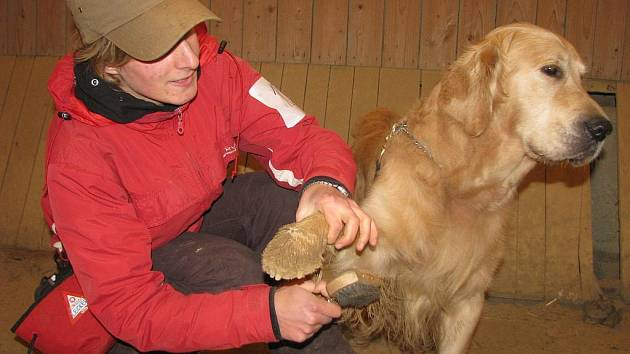Na ranči v Kostelanech se konala výstava voříšků a psů bez papírů