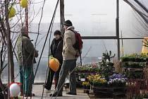 Velikonoční trhy spolu s výstavou květinových vazeb se konaly v sobotu a v neděli v Zámeckém zahradnictví Stella v Holešově. Na programu byla vystoupení folklorních souborů i ukázka pečení chleba.