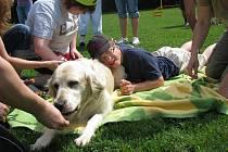 Postižené děti na tréninku psů, Holešov