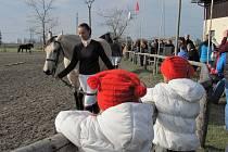 V Pravčicích oslavovali 28. října 2011 uplynutí padesáti let od založení prvního místního jezdeckého klubu.