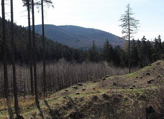 Výhled zNového Šaumburka.