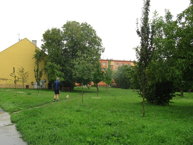V parku na ulici Elišky Krásnohorské v Kroměříži by mělo vyrůst Rákosníčkovo hřiště společnosti Lidl.