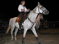 Tradiční noční koňská show. Ilustrační foto