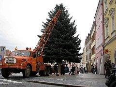 Vánoční strom. Ilustrační foto z roku 2010