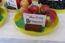 Výstavu ovoce a zeleniny s interaktivním programem pořádala v Holešově místní organizace Českého zahrádkářského svazu.