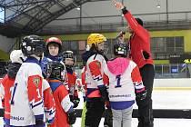 Všech devět klubů kraje se zapojí během tohoto týdne do již šestého ročníku projektu Týden hokeje, který má za cíl představit nejmenším dětem lední hokej.