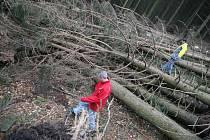 Orkán Emma kácel stromy nedaleko chaty Vsacký Cáb