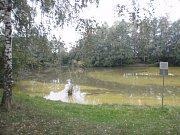 Profesionální hasiči museli v neděli 8. října v podvečer zasahovat u rybníka v Mrlínku: ve vodě se tam totiž objevila zatím neupřesněná chemická látka.