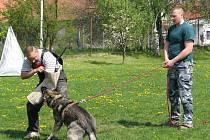 Na kroměřížském cvičišti školili v neděli 27. dubna 2008 kynologové budoucí figuranty a instruktory.